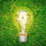 luce green più conveniente